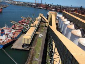 La liquidación de divisas por parte de la agroexportación superó los US$ 3.000 millones en abril